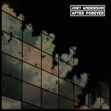 Joey Anderson『After Forever』.jpg